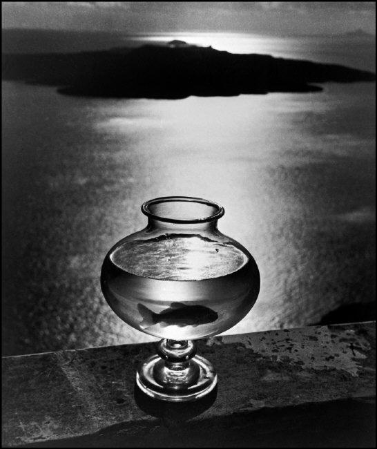 Goldfish bowl, Santorini Island, Cyclades, Greece, 1937, © Herbert List - Magnum Photos