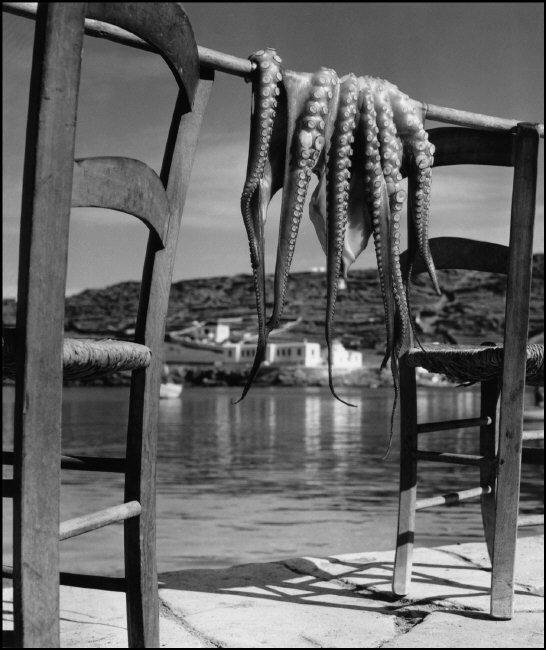Octopus, Ionian island of Corfu, Greece, 1938, © Herbert List - Magnum Photos
